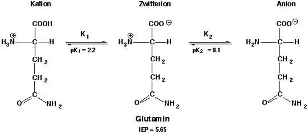 suplementi-formula